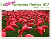 Featherstone flamingos