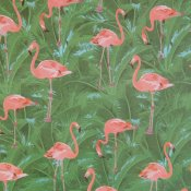 Presentpapper, Flamingo